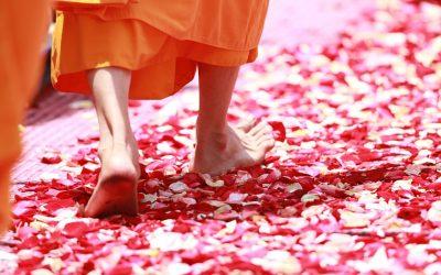 10 rituels pour arriver à la maîtrise de soi